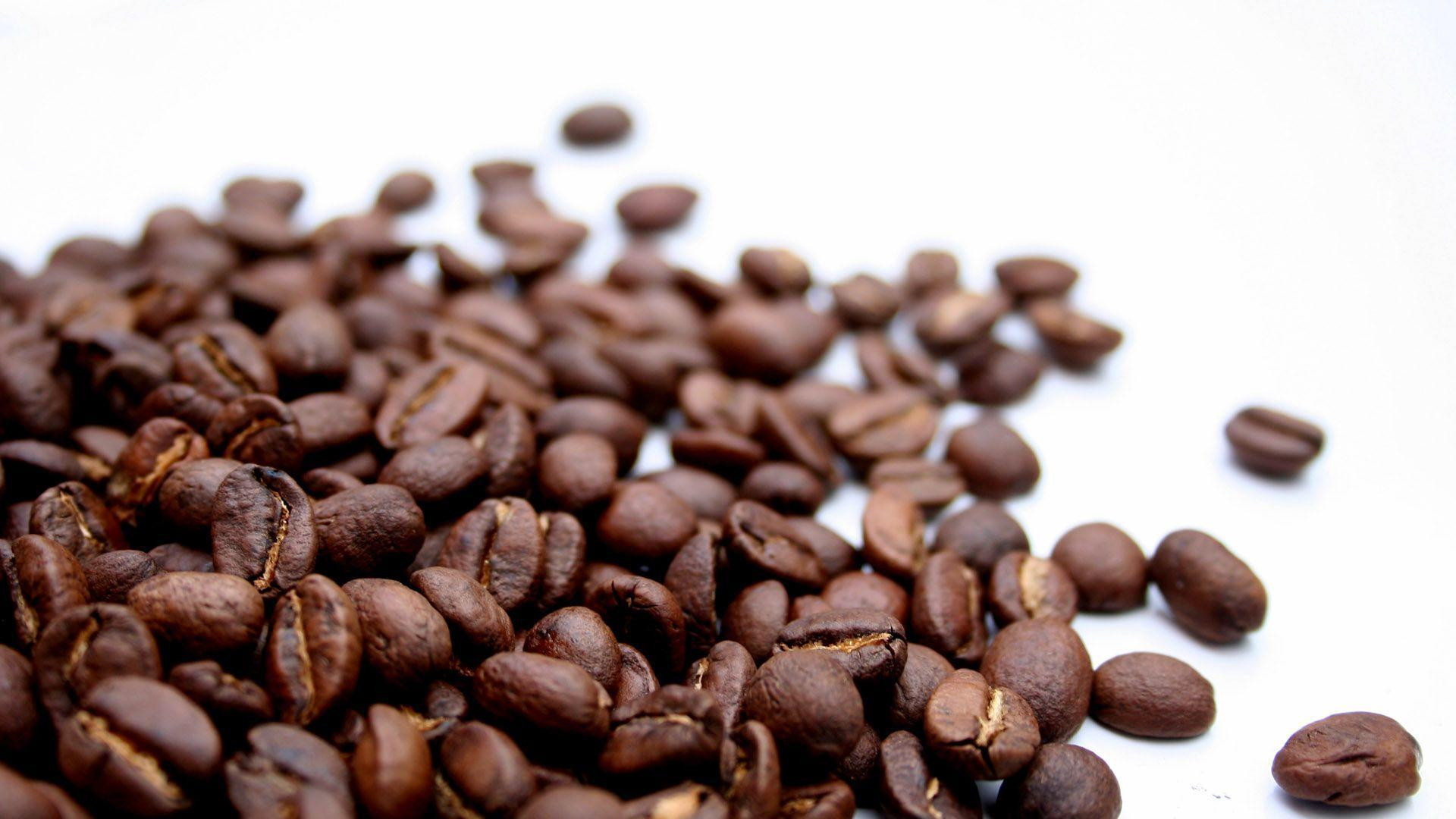 What is FSVP and Why Should Coffee Importers Care?